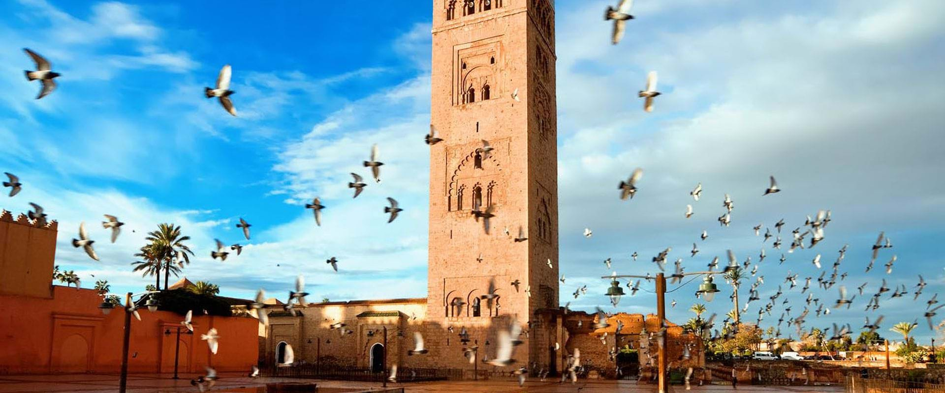 Explore the best of Morocco